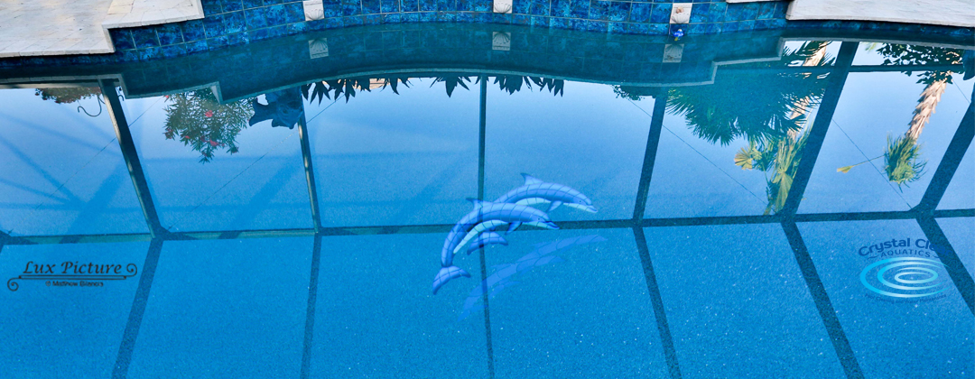 Crystal Clear Aquatics Pool Service