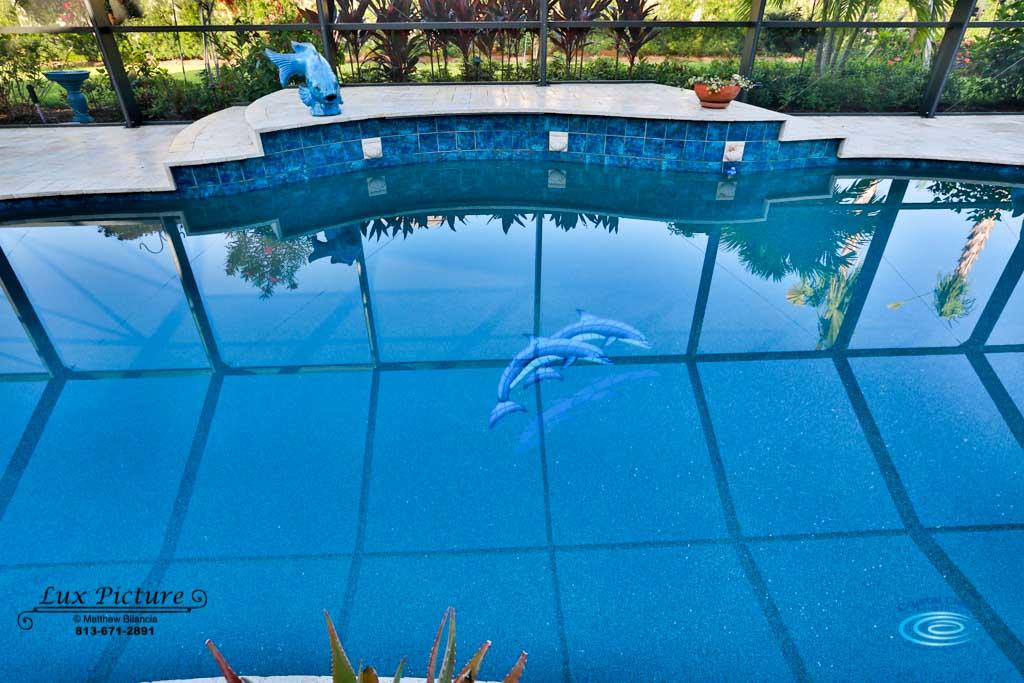 Blog Crystal Clear Aquatics Pool Spa Services