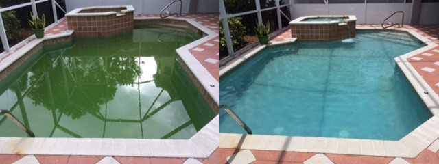 Palm Beach Swimming Pool Service - Green-to-Clean - CCA
